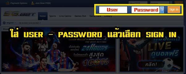 ใส่ user password กด sign in